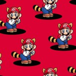 Super Mario 2