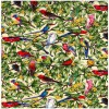 Birds in Paradise Colour 1 Ivory